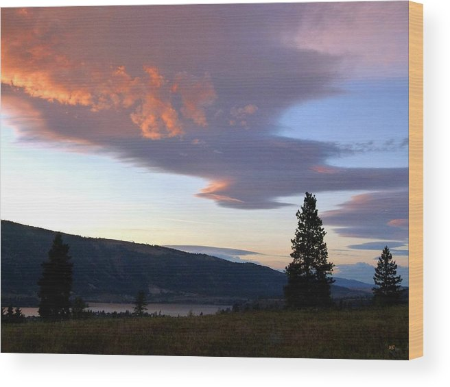 Magnificent Moment Wood Print featuring the photograph A Magnificent Moment 1 by Will Borden