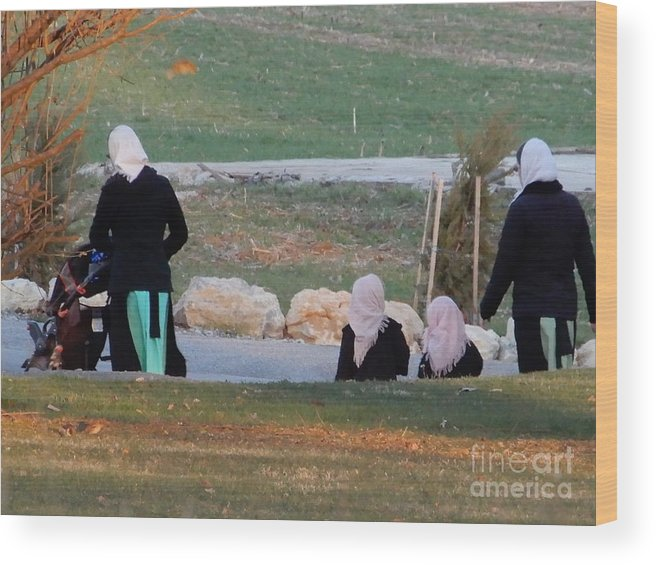 Amish Wood Print featuring the photograph A Sunset Stroll by Christine Clark