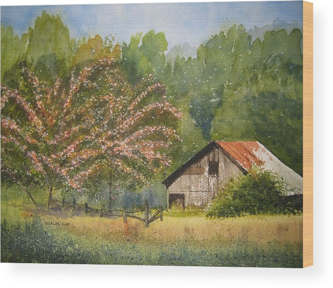 Mimosa Trees Wood Print featuring the painting Abandoned Mimosas by Shirley Braithwaite Hunt