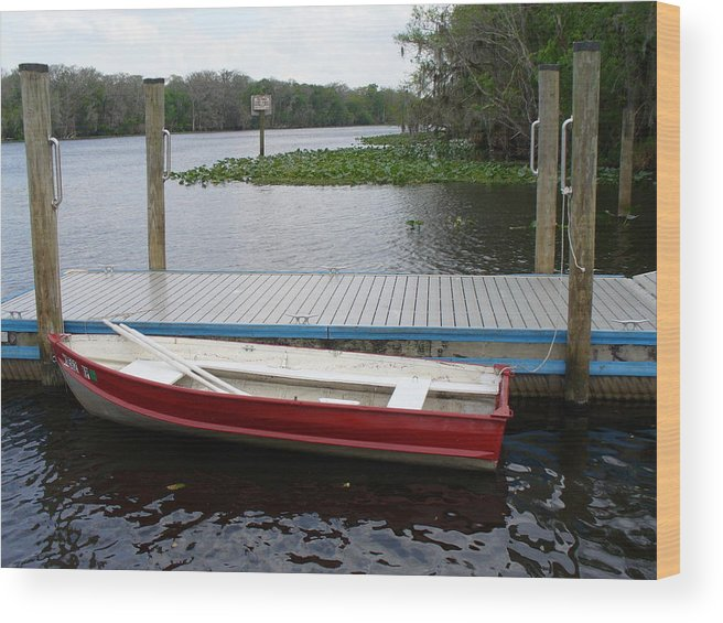 Water Wood Print featuring the photograph Afloat by Stephanie Richards