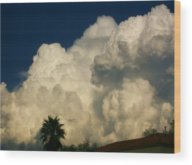 Monsoon Wood Print featuring the photograph Afternoon Monsoon by Kathleen Heese