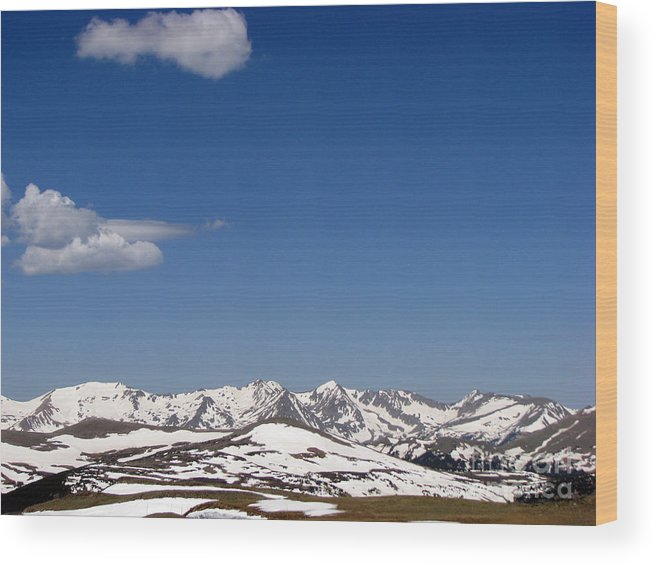 Mountains Wood Print featuring the photograph Alpine Tundra Series by Amanda Barcon