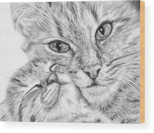 Cat Wood Print featuring the drawing Always Together by Frances Vincent