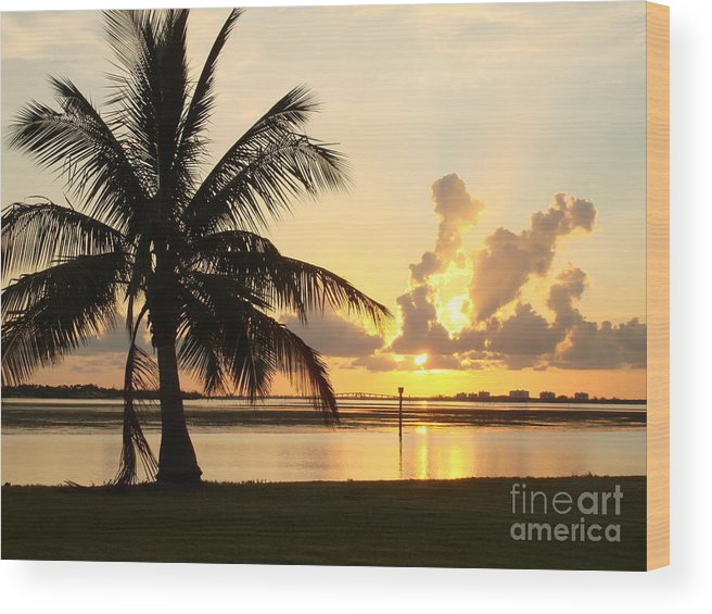 Sunset Wood Print featuring the photograph Another Day In Paridise by Robyn Leakey