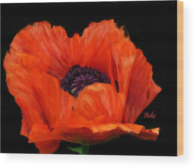 Anke Wheeler Wood Print featuring the painting Another Red Poppy by Anke Wheeler