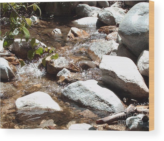 Water Wood Print featuring the photograph At Peace by Brian Edward Harris