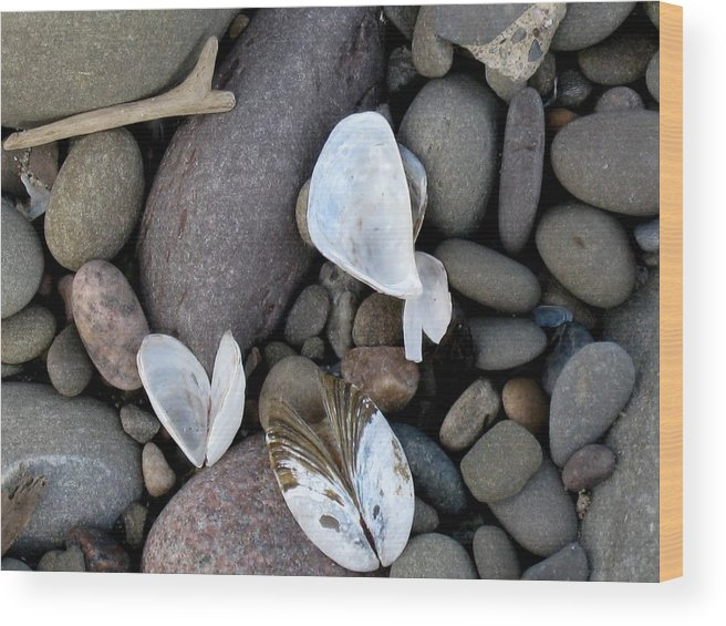 Nature Wood Print featuring the photograph At The Lake by Rose Dellinger