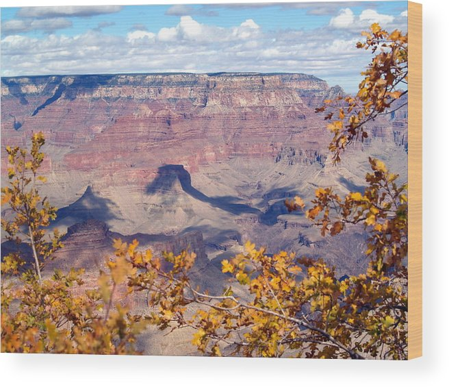 Grand Canyon National Park Wood Print featuring the photograph Autumn Leaves by Carrie Putz