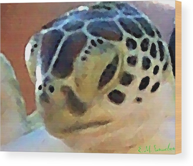 Turtle Wood Print featuring the photograph Baby Turtle by Elise Samuelson
