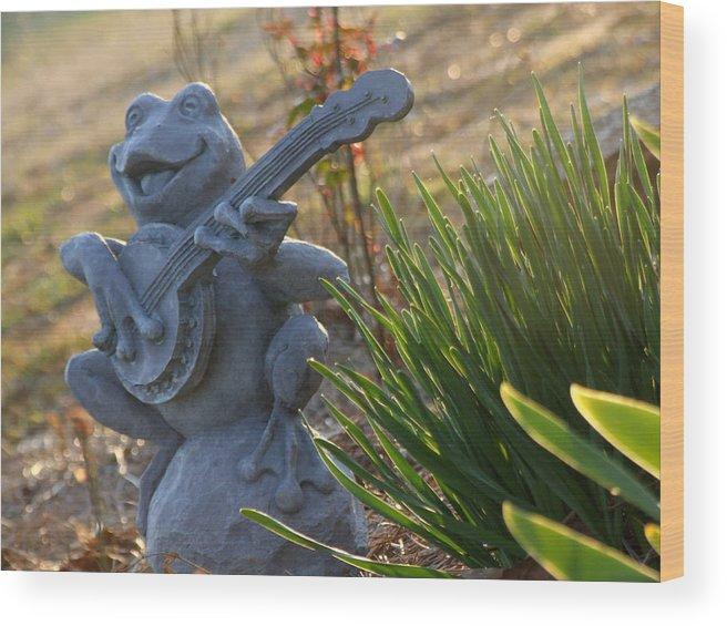 Bullfrog Wood Print featuring the photograph Banjo Playin' Bull Frog by Keri Renee