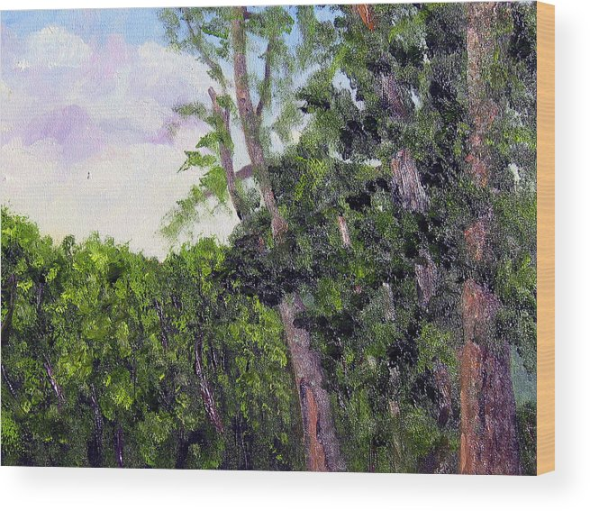 Pein Air Wood Print featuring the painting Bc 16 by Stan Hamilton