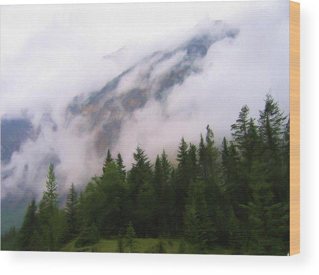 Digital Art Wood Print featuring the painting Bc Beauty by Lori DeBruijn
