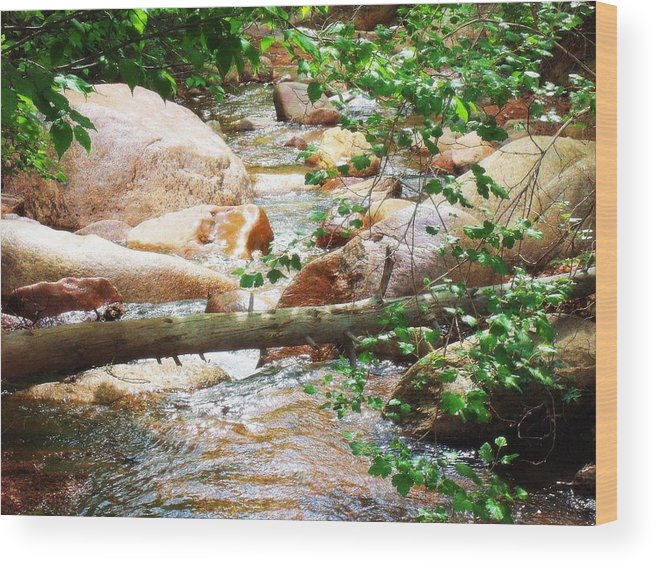 Bear Creek Wood Print featuring the photograph Bear Creek Cheyenne Canyon by Clarice Lakota