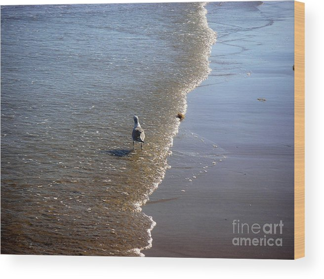 Nature Wood Print featuring the photograph Being One With The Gulf - Ahead by Lucyna A M Green