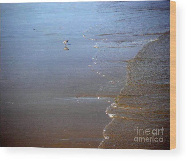 Nature Wood Print featuring the photograph Being One With The Gulf - Still by Lucyna A M Green