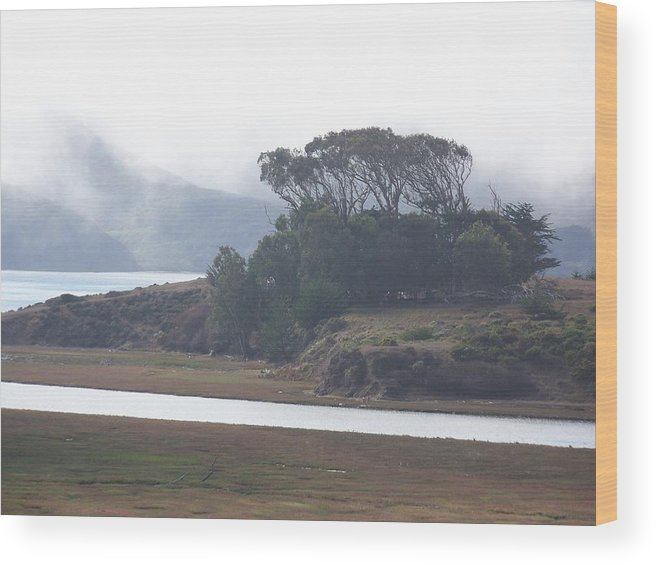 Waterscape Wood Print featuring the photograph Blue Mist by Maggie Cruser
