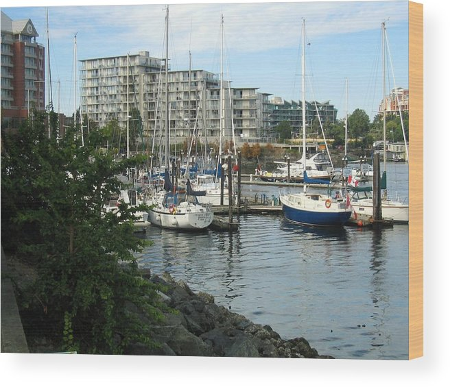 Boats Wood Print featuring the photograph Boat Docks by Bob Gardner