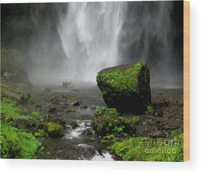 Waterfall Wood Print featuring the photograph Bottom Of Wakeena Falls by PJ Cloud