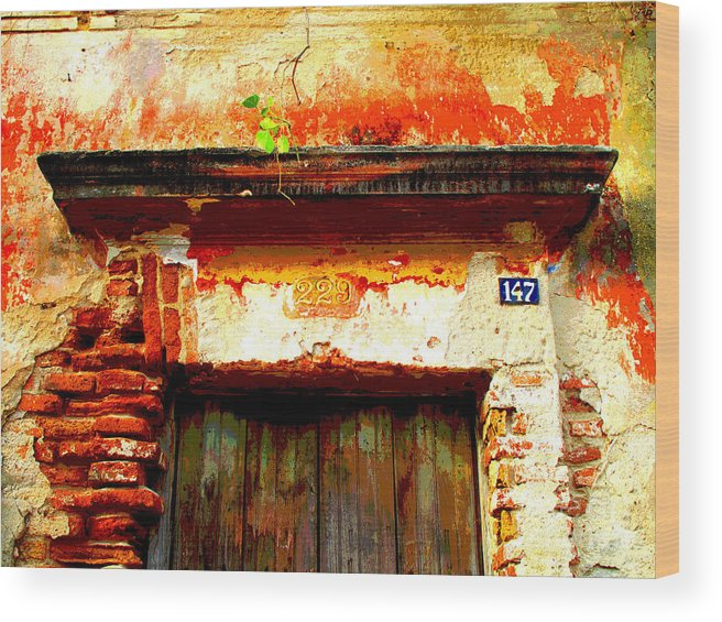 Darian Day Wood Print featuring the photograph Brick And Wood By Darian Day by Mexicolors Art Photography