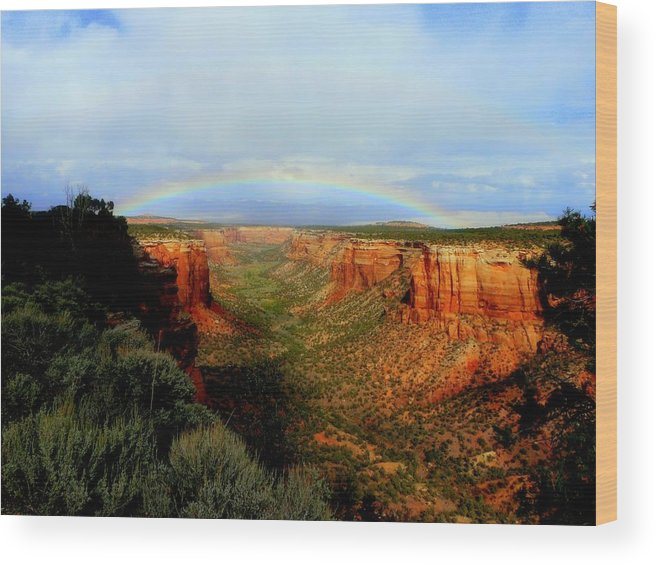 Rainbow Wood Print featuring the photograph Canyon Rainbow by Ellen Leigh