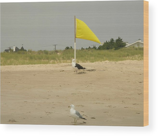 Beach Wood Print featuring the photograph Capture The Flag by See Me Beautiful Photography