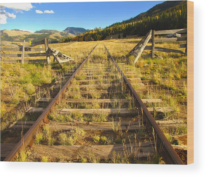 Train Wood Print featuring the photograph Cattle Track Guard by Carol Milisen
