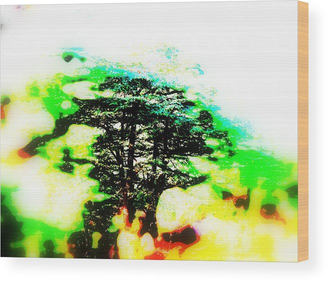 Lebanon Wood Print featuring the photograph Cedars Of Lebanon by Funkpix Photo Hunter