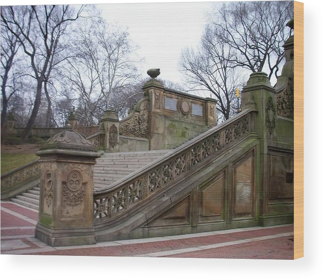 Central Park Wood Print featuring the photograph Central Park Bethesda 1 by Anita Burgermeister