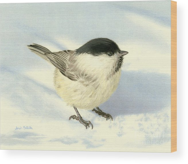 Chickadee Wood Print featuring the painting Chilly Chickadee by Sarah Batalka