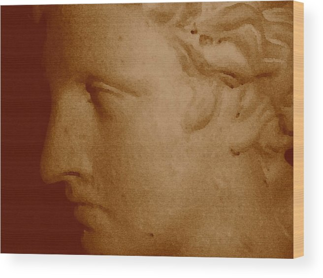 Sepia Wood Print featuring the photograph Classical Head by Susan Grissom