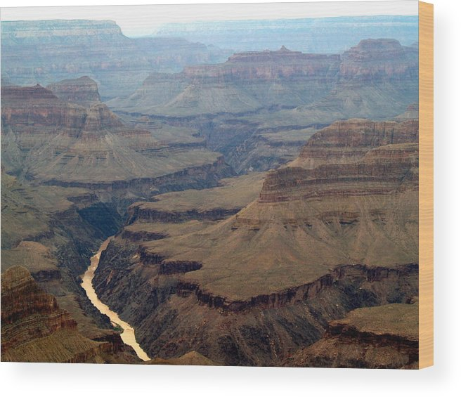 Grand Canyon National Park Wood Print featuring the photograph Colorado River by Carrie Putz