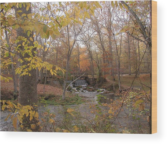 Fall Wood Print featuring the photograph Colors Flow by Bj Hodges