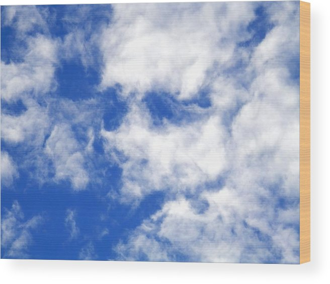 #face #blue Sky #white #clouds #port #richey #florida #august #sunglasses?? Wood Print featuring the photograph Cool Face In The Blue Sky by Belinda Lee