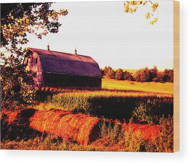 Golden Wood Print featuring the photograph Country Farm by Lori Faircloth