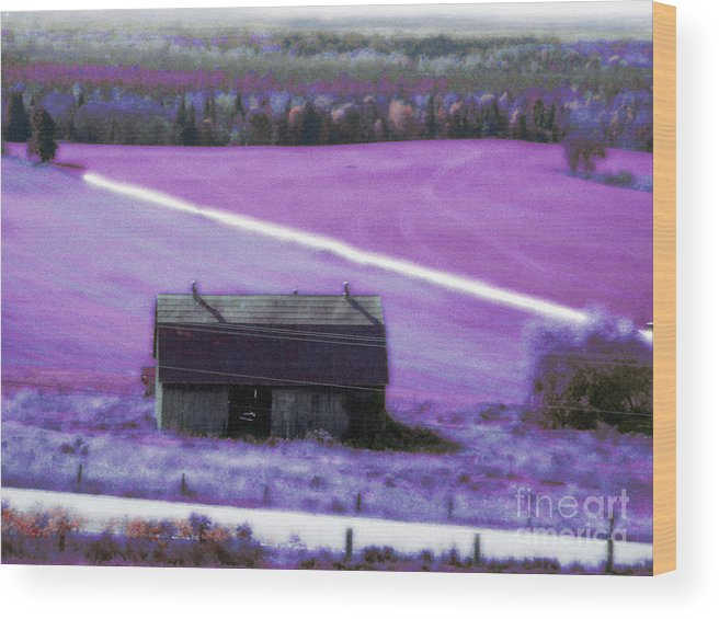 Barn Wood Print featuring the mixed media Country Life by Scarlet Sima