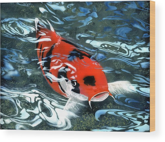Coy Koi Wood Print featuring the painting Coy Koi by Charles Parks