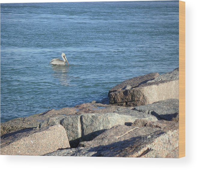 Nature Wood Print featuring the photograph Creatures Of The Gulf - Pelican Landing by Lucyna A M Green