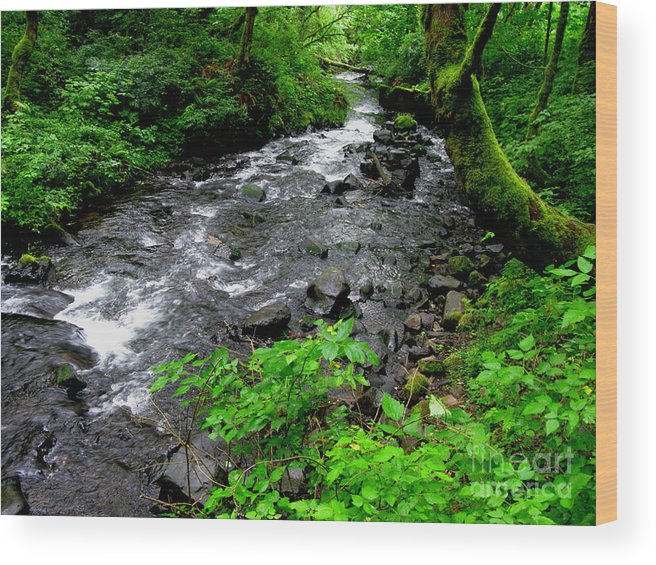 River Wood Print featuring the photograph Creek Flow by PJ Cloud