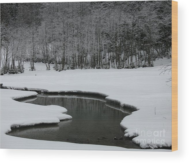 Creek Wood Print featuring the photograph Creek In Snowy Landscape by Christiane Schulze Art And Photography