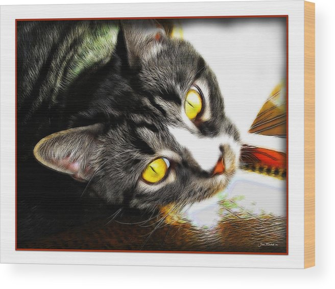 Cat Wood Print featuring the photograph Curiousity by Joan Minchak
