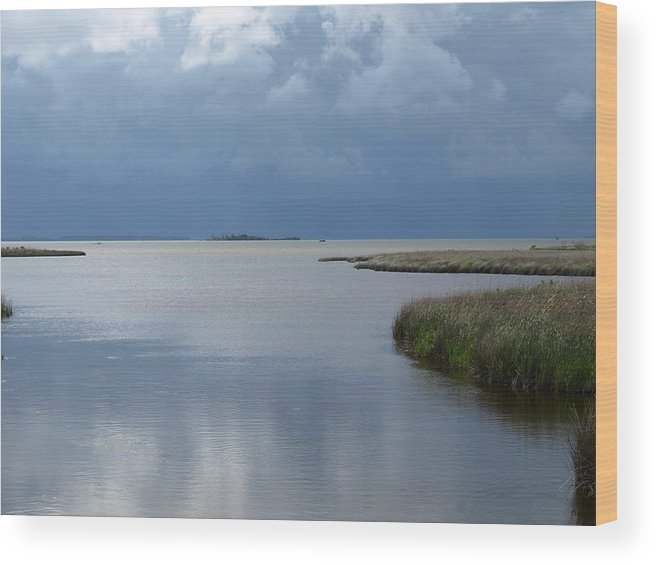 Currituck Sound Wood Print featuring the photograph Currituck Sound - 1 by Jeffrey Peterson