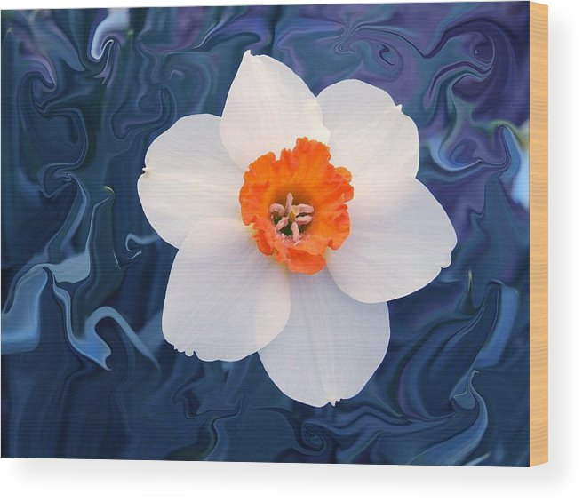 Flower Wood Print featuring the photograph Daffodill In Blue by Jim Darnall