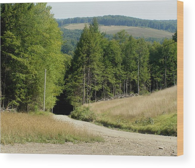 Mountains Wood Print featuring the photograph Dirt Road Through The Mountains by Jeanette Oberholtzer