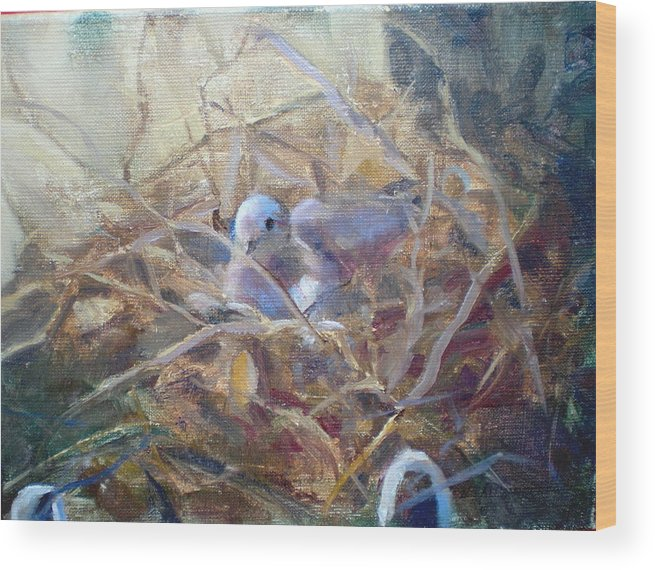 Dove Planter Nest Earth Colors Wood Print featuring the painting Dove Nesting by Bryan Alexander