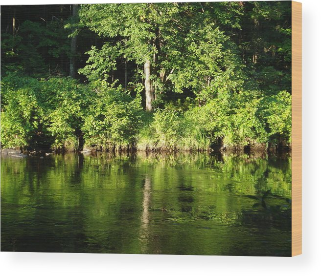 Wood Print featuring the photograph Down By The River by Amiee Mekka