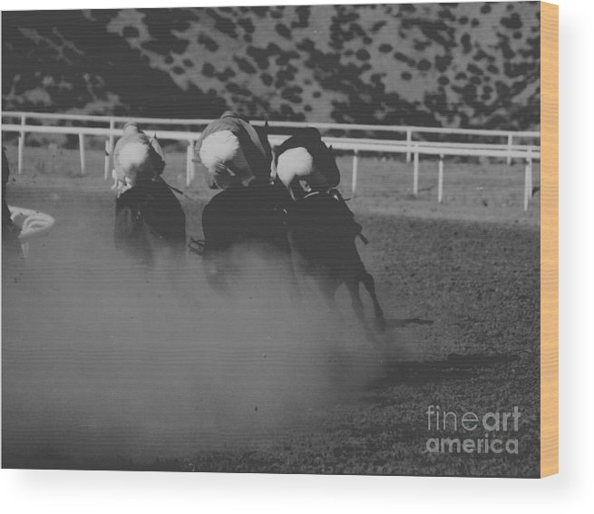 Horse Wood Print featuring the photograph Dust And Butts by Kathy McClure