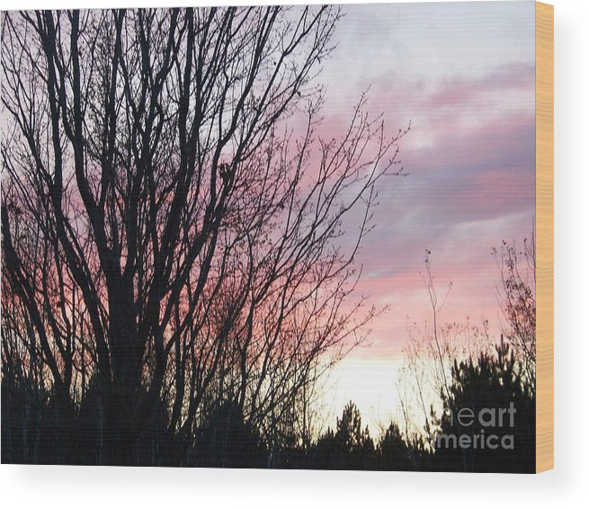 Sky Wood Print featuring the photograph Evening Sky - October 27 by Jackie Mueller-Jones