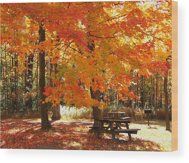 Fall Wood Print featuring the photograph Fall At The Park by Judy Waller