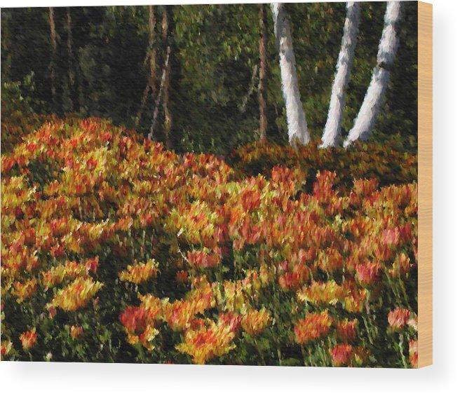 Fall Wood Print featuring the mixed media Fall Hike by John-Marc Grob