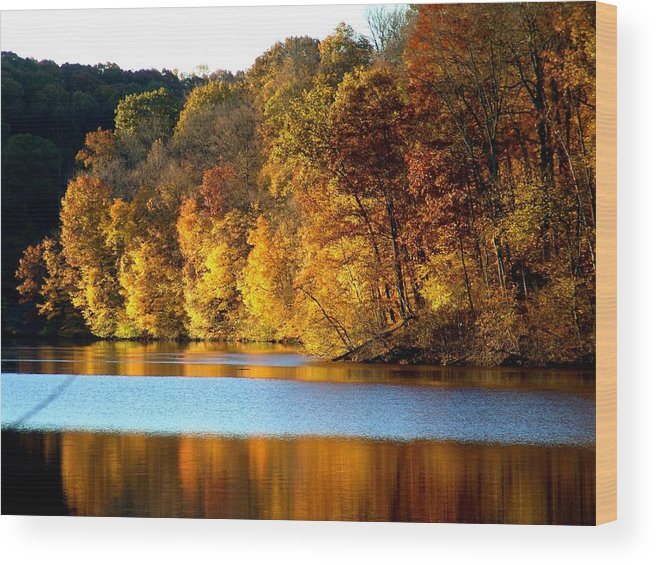 Trees Wood Print featuring the photograph Fall Reflections Of Indiana by Carol Milisen